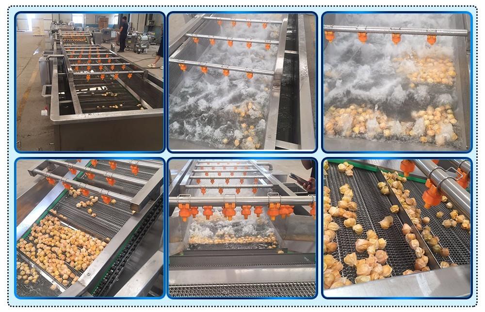 usine de machines à laver industrielles pour fruits et légumes