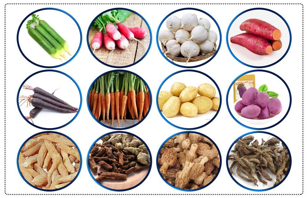 usine de machines à laver les légumes à brosses
