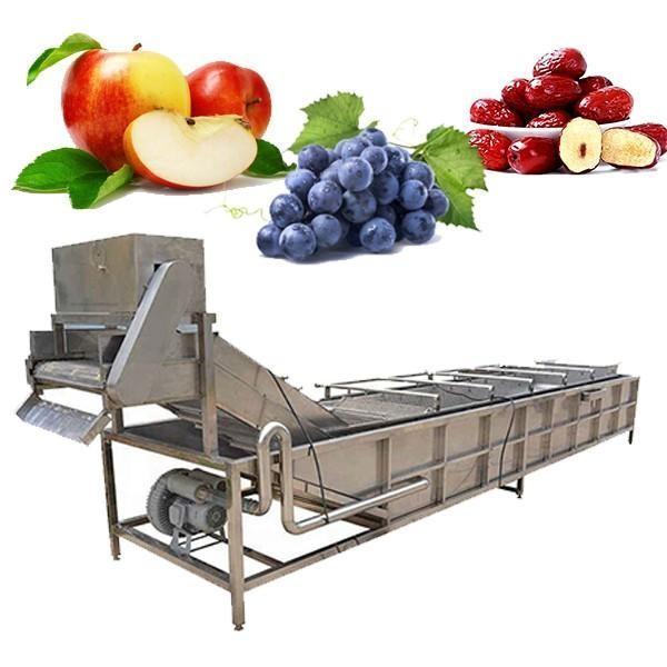 Lave-linge industriel pour fruits et légumes #3 image