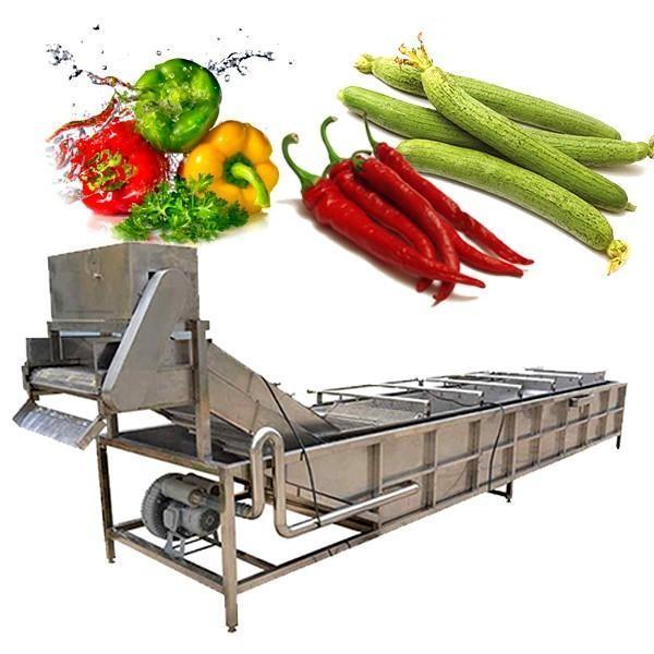 Lave-linge industriel pour fruits et légumes #2 image